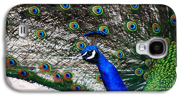Proud Peacock Galaxy S4 Case by Sheryl Cox