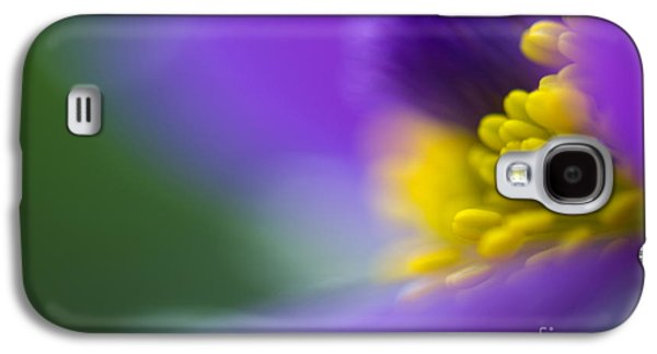 Flowers Photographs Galaxy S4 Cases - Pulsatilla Galaxy S4 Case by Silke Magino