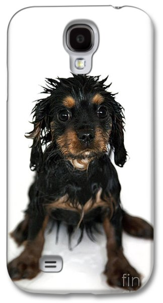 Studio Photographs Galaxy S4 Cases - Puppy bathtime Galaxy S4 Case by Jane Rix