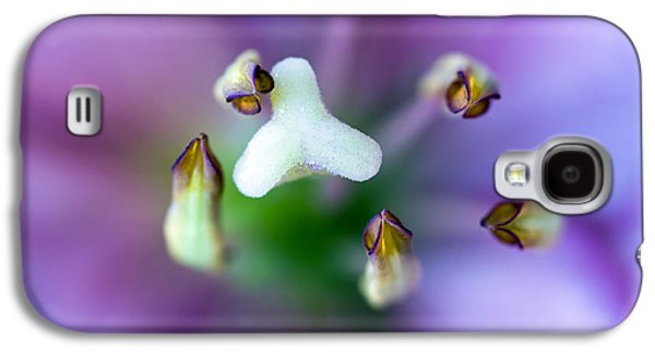 Stigma Galaxy S4 Cases - Purple Botanical Galaxy S4 Case by Frank Tschakert