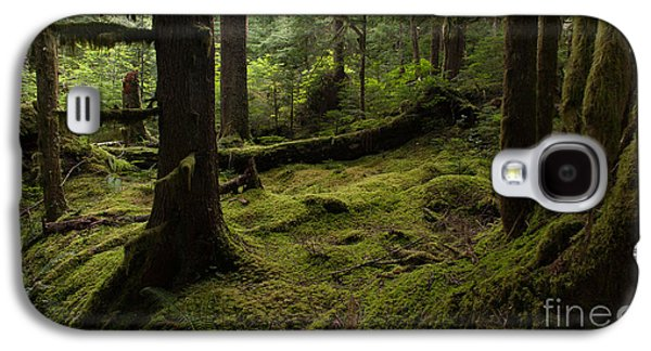 Outdoors Galaxy S4 Cases - Quietly Alive Galaxy S4 Case by Mike Reid