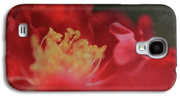 Macro Digital Art Galaxy S4 Cases - Reaching For Joy Galaxy S4 Case by Laurie Search