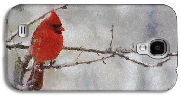 Snowy Digital Art Galaxy S4 Cases - Red Bird of Winter Galaxy S4 Case by Jeff Kolker