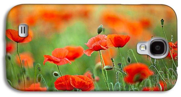 Botanical Galaxy S4 Cases - Red Corn Poppy Flowers 03 Galaxy S4 Case by Nailia Schwarz