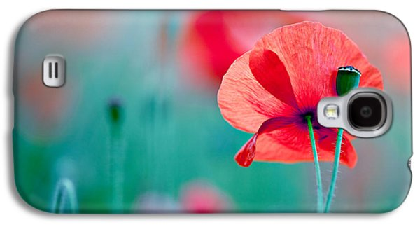 Botanical Galaxy S4 Cases - Red Corn Poppy Flowers 04 Galaxy S4 Case by Nailia Schwarz
