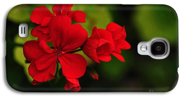 Red Geraniums Galaxy S4 Cases - Red Geranium Galaxy S4 Case by Kaye Menner