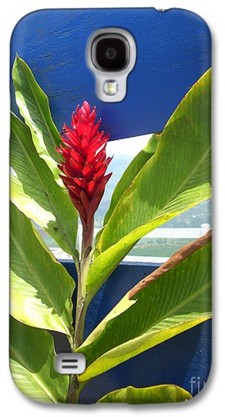 Randi Shenkman Galaxy S4 Cases - Red Ginger Galaxy S4 Case by Randi Shenkman