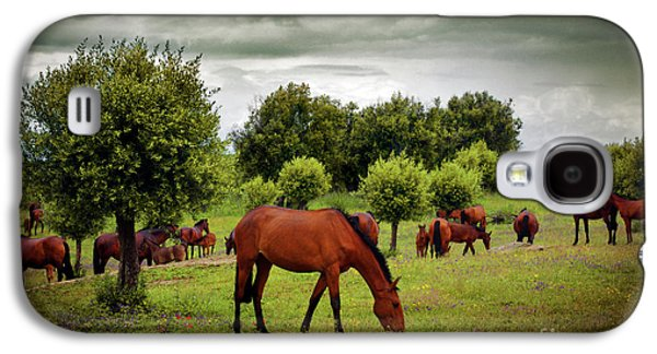 Cloudy Day Galaxy S4 Cases - Red Horses Galaxy S4 Case by Carlos Caetano
