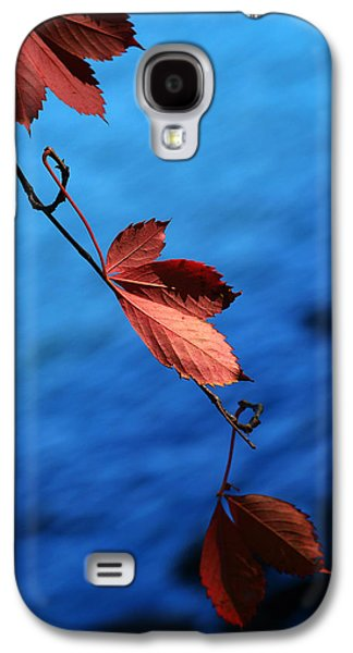 Harvest Time Galaxy S4 Cases - Red maple leaves Galaxy S4 Case by Paul Ge