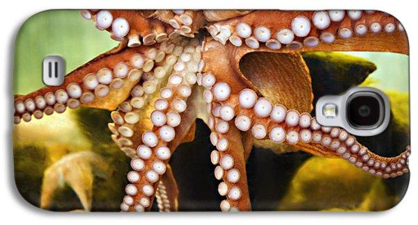 Aquarium Fish Galaxy S4 Cases - Red Octopus Galaxy S4 Case by Marilyn Hunt