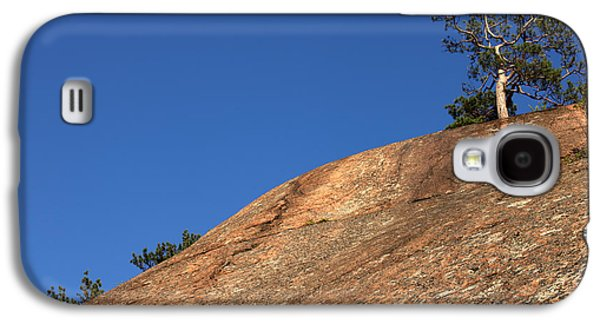 Harsh Conditions Galaxy S4 Cases - Red Pine Tree Galaxy S4 Case by Ted Kinsman