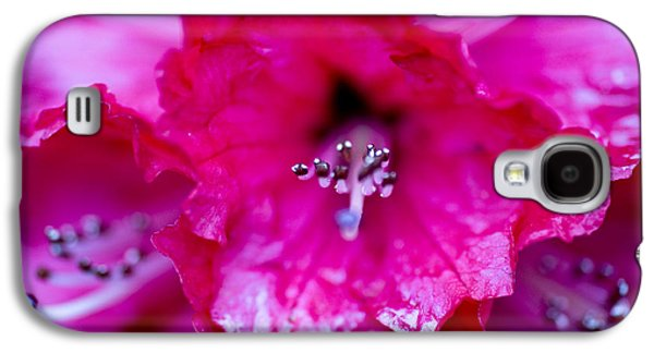 Garden Images Galaxy S4 Cases - Red Rhododendron Galaxy S4 Case by Frank Tschakert