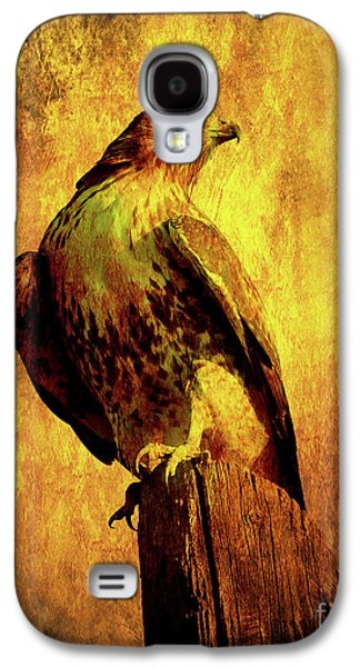 Red Tail Hawk Galaxy S4 Cases - Red Tailed Hawk . texture . 40D10167 Galaxy S4 Case by Wingsdomain Art and Photography