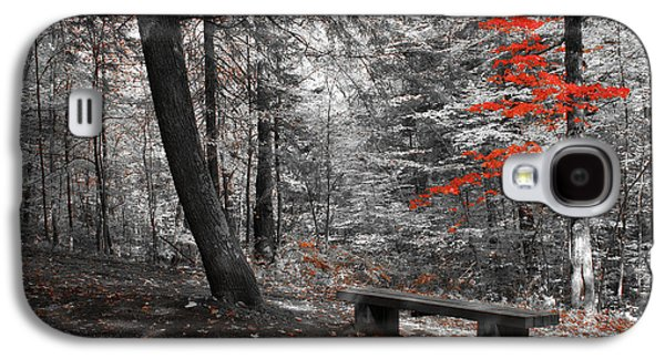 Aimelle Prints Galaxy S4 Cases - Reds in the Woods Galaxy S4 Case by Aimelle