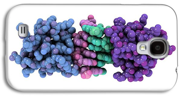 Microbiological Galaxy S4 Cases - Rna-editing Enzyme, Molecular Model Galaxy S4 Case by Laguna Design