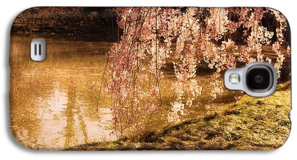 Cherry Blossoms Galaxy S4 Cases - Romance - Sunlight through Cherry Blossoms Galaxy S4 Case by Vivienne Gucwa