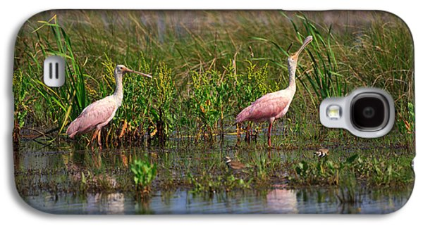 Roseate Spoonbills Galaxy S4 Case by Louise Heusinkveld