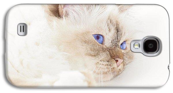 Breed Digital Art Galaxy S4 Cases - Sacred Cat of Burma Galaxy S4 Case by Melanie Viola