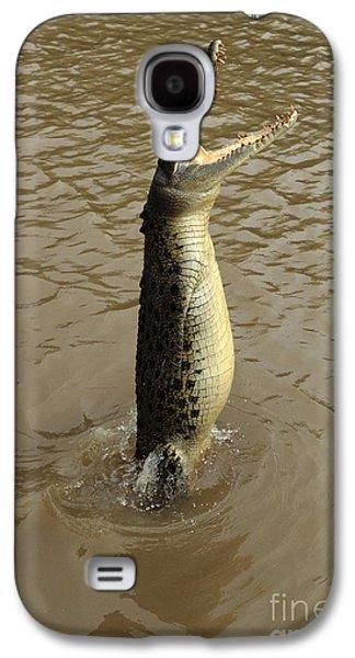 Salt Water Crocodile Galaxy S4 Case by Bob Christopher