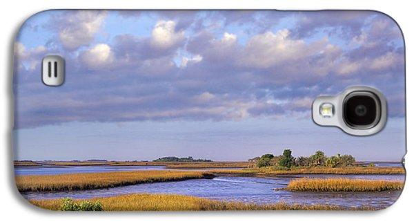 Cedar Key Galaxy S4 Cases - Saltwater Marshes At Cedar Key Florida Galaxy S4 Case by Tim Fitzharris