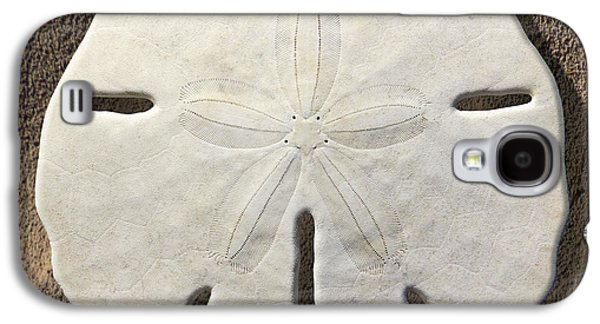 Sand Galaxy S4 Cases - Sand Dollar Galaxy S4 Case by Mike McGlothlen