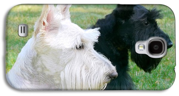 Scottish Dog Galaxy S4 Cases - Scottish Terrier Dogs Galaxy S4 Case by Jennie Marie Schell