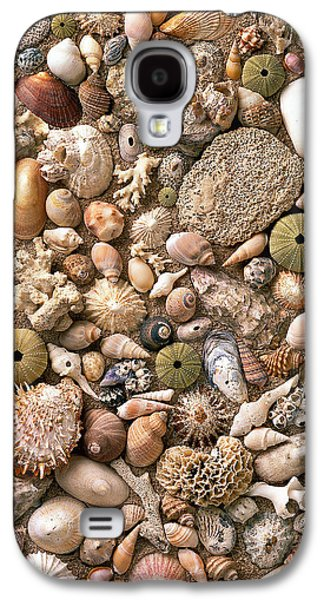 Abstract Digital Pyrography Galaxy S4 Cases - Sea Shells  Galaxy S4 Case by Mauro Celotti