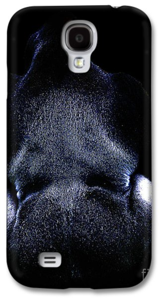 Ape Digital Art Galaxy S4 Cases - Silverback . Photoart . R7917 Galaxy S4 Case by Wingsdomain Art and Photography