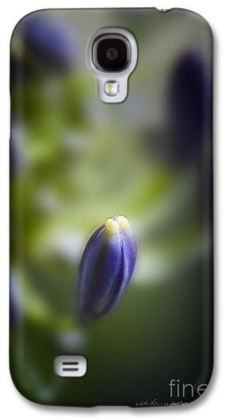 Vicki Ferrari Photography Photographs Galaxy S4 Cases - Simplicity Galaxy S4 Case by Vicki Ferrari Photography