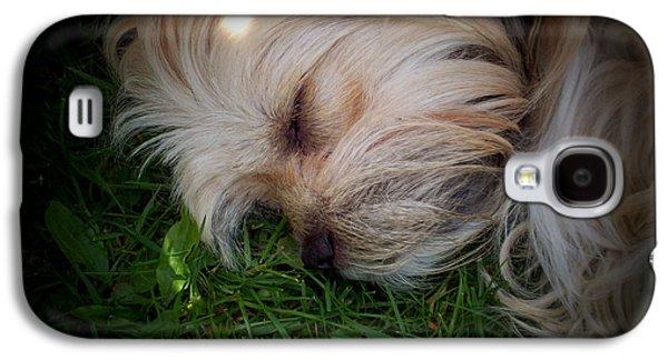 Puppy Digital Art Galaxy S4 Cases - Sleeping Beauty Galaxy S4 Case by Robert Orinski