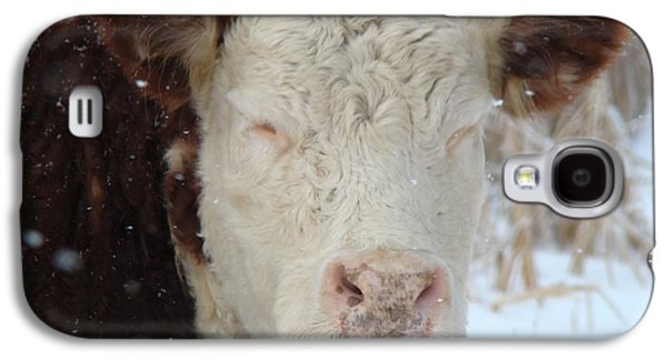 Nature Scene Digital Art Galaxy S4 Cases - Sleepy Cow Galaxy S4 Case by Gothicolors Donna Snyder