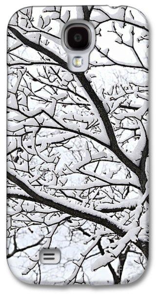 January Galaxy S4 Cases - Snowy branch Galaxy S4 Case by Elena Elisseeva
