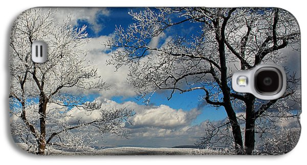 Trees In Snow Galaxy S4 Cases - Snowy Sunday Galaxy S4 Case by Lois Bryan