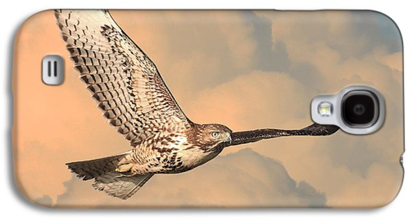Red Tail Hawk Galaxy S4 Cases - Soaring Hawk Galaxy S4 Case by Wingsdomain Art and Photography