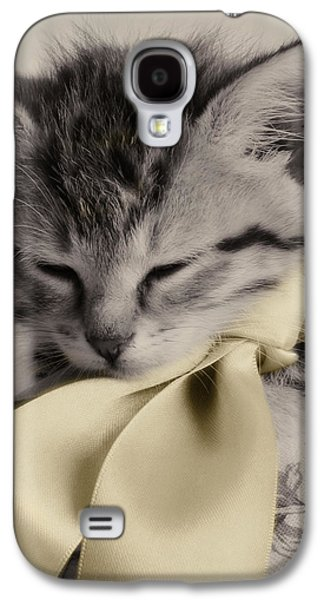 Gray Tabby Galaxy S4 Cases - Soft Galaxy S4 Case by Amy Tyler