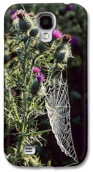 Buy Galaxy S4 Cases - Spear Thistle (cirsium Vulgare) Galaxy S4 Case by Adrian Bicker