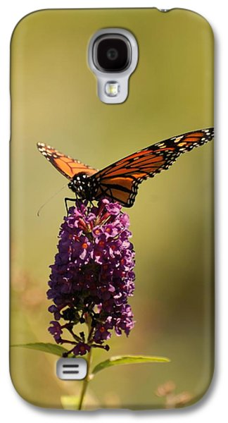 Sunlight On Flowers Galaxy S4 Cases - Spread Your Wings And Fly Galaxy S4 Case by Angie Tirado