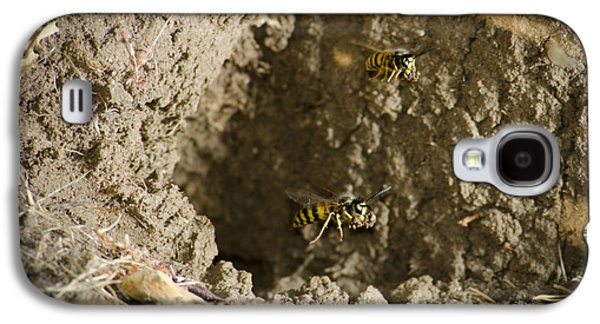 Mud Nest Galaxy S4 Cases - SPRING CLEANING Pair of wasps carrying mud from a yellow-jacket wasps nest Galaxy S4 Case by Andy Smy