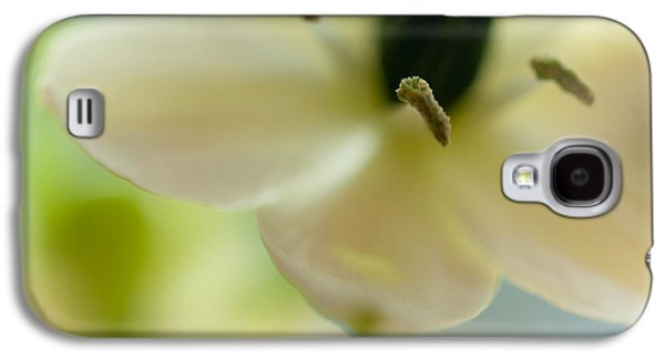 Flower Design Photographs Galaxy S4 Cases - Spring Feeling Galaxy S4 Case by Jenny Rainbow