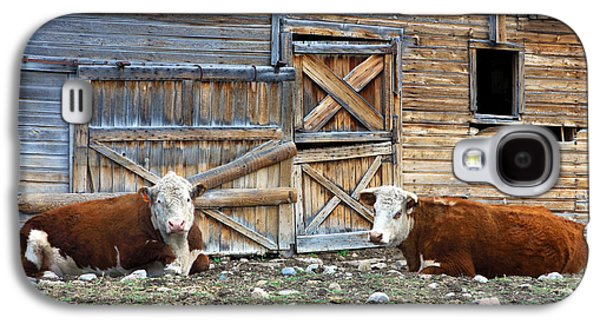 Outbuildings Galaxy S4 Cases - Squires Herefords by the Rustic Barn Galaxy S4 Case by Karon Melillo DeVega