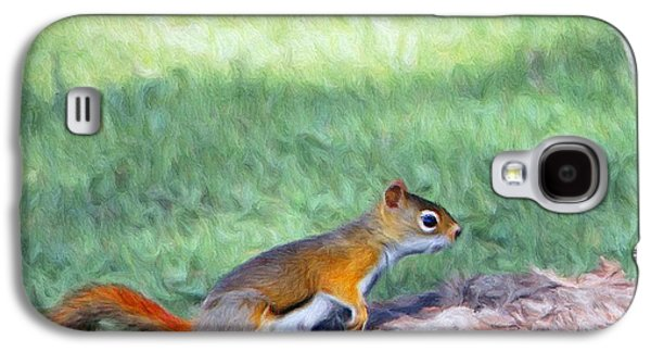 Squirrel Digital Art Galaxy S4 Cases - Squirrel in the Park Galaxy S4 Case by Jeff Kolker