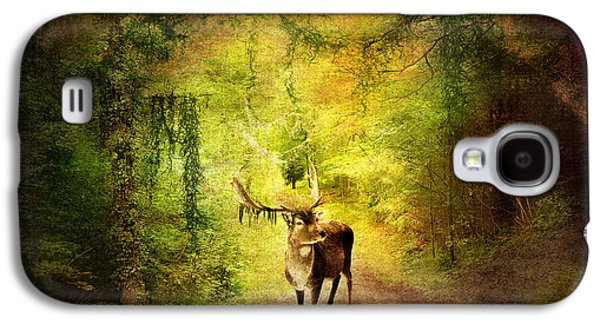 Nature Scene Mixed Media Galaxy S4 Cases - Stag Galaxy S4 Case by Svetlana Sewell