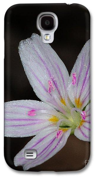 Star Of Bethlehem Galaxy S4 Cases - Star of Bethlehem Galaxy S4 Case by Paul Ward