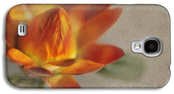 Texture Flower Galaxy S4 Cases - Straw Flower Galaxy S4 Case by Rebecca Cozart