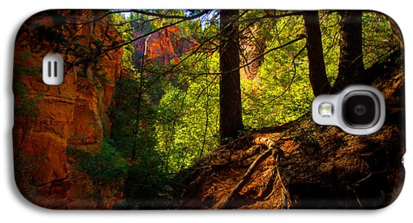 Pine Tree Galaxy S4 Cases - Subway Forest Galaxy S4 Case by Chad Dutson