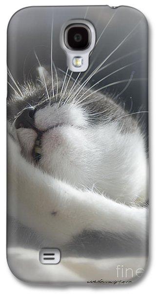 Vicki Ferrari Photography Photographs Galaxy S4 Cases - Sully Sunning Galaxy S4 Case by Vicki Ferrari Photography
