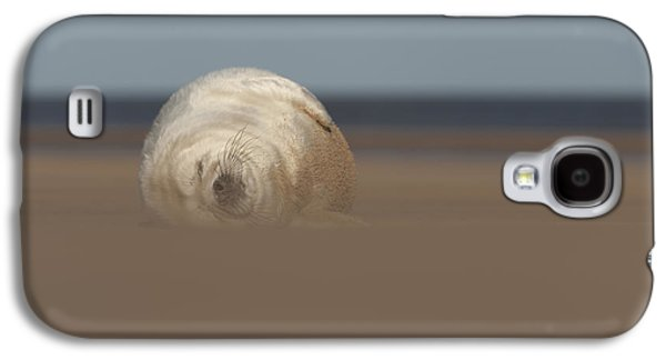 Ocean Mammals Galaxy S4 Cases - Sun Sea and Sand Galaxy S4 Case by Andy Astbury