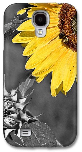 Galaxy S4 Cases - Sunflower Galaxy S4 Case by Antonio Gruttadauria