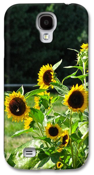 Sunflower Patch Galaxy S4 Cases - Sunflower Patch Galaxy S4 Case by Debra     Vatalaro