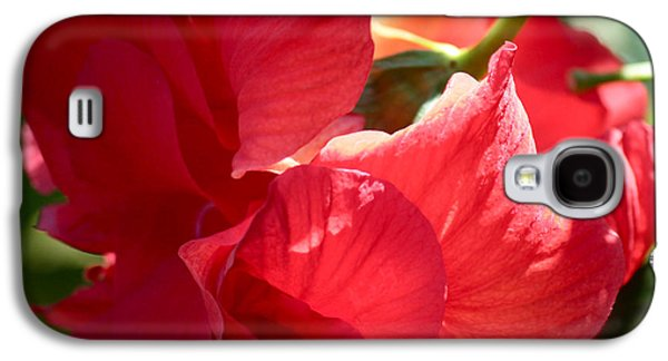 Sunlight On Flowers Galaxy S4 Cases - Sunlight on Red Hibiscus Galaxy S4 Case by Carol Groenen